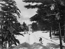 寒假(所有人被描述不更长生存,并且庄园不存在 供应商保单将没有模型 免版税图库摄影
