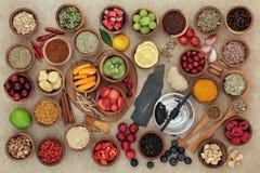 寒冷和流感补救的超级食物 免版税库存图片