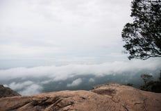 寒冷和许多雾谷 免版税图库摄影