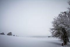 寒冷开放冬天风景 免版税图库摄影