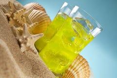 寒冷饮料和壳在海滩 图库摄影