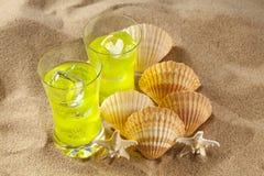 寒冷饮料和壳在海滩 库存图片