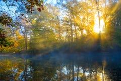 寒冷,但是美好的秋天早晨 免版税库存照片