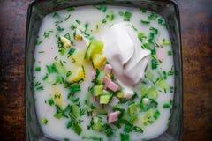 寒冷,菜和开胃okroshka,家庭准备冷的汤,装饰用在一个黑色的盘子的绿色 库存照片