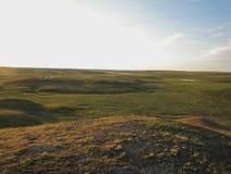 寒带草原在夏天 图库摄影