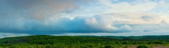 寒带草原在夏天 免版税图库摄影