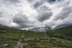 寒带草原风景在北瑞典 图库摄影