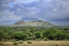 察沃国家公园在肯尼亚 库存照片