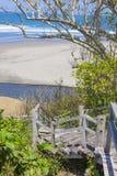 对一个热带海滩的台阶 图库摄影