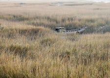 对一条残破的小船的芦苇草 免版税库存照片
