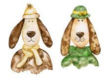 对与长的耳朵的时髦的狗 设置水彩 免版税库存图片