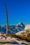 对优胜美地谷的一张视图从Olmsted点,优胜美地国民 免版税库存图片