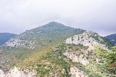 对充分山的白天有雾的视图在Eze村庄附近的树 免版税库存图片