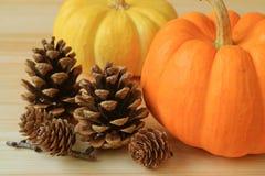 对充满活力的与许多自然干燥杉木锥体的颜色成熟南瓜在木桌上 图库摄影