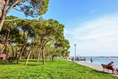 对充满活力的绿色晴朗的公园的白天视图有游人的 库存照片