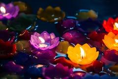 对光检查五颜六色的花,美好的loy krathong天 免版税库存图片
