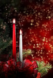 对光检查圣诞节 免版税库存图片