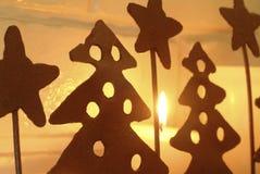 对光检查圣诞节 图库摄影