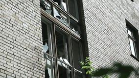 对公开或私有财产的破坏或损伤 在窗架的残破的玻璃 被放弃的门面  影视素材