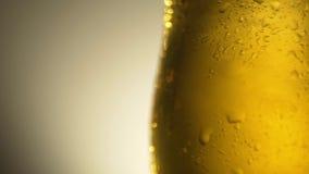 对冷玻璃杯4K的倾吐的啤酒 股票录像
