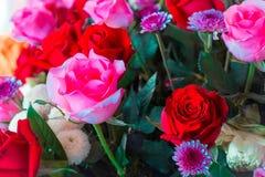 对创造性的样式和纹理的葡萄酒玫瑰色花淡色 图库摄影