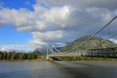 对别墅O希金斯,南方的Carretera,智利的桥梁 库存照片