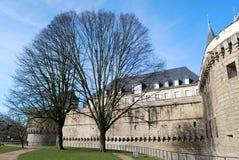 对城堡的看法在有树的南特 库存照片