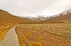 对多雪的山峰的线索 库存照片