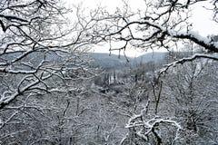 对多雪的深渊的窗口 库存照片