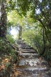 对天堂的楼梯在英国湖区 免版税库存图片