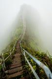 对天堂的楼梯瓦胡岛夏威夷coverd的在早晨雾之前 免版税库存图片
