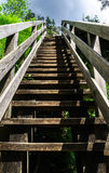 对天堂的自然木楼梯 库存照片