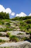 对天堂,高Tatras的楼梯 库存图片