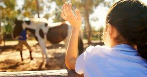 对她的母亲的女孩挥动的手在大农场4k 影视素材
