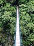 对密林的桥梁 免版税图库摄影