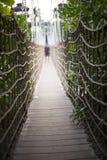 对密林的桥梁 库存照片
