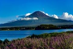 对富士山淡紫色的看法在与蓝天和云彩w的夏天 免版税库存照片