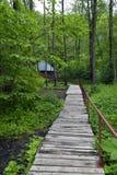 对小屋的足迹 库存照片