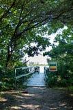 对小木船坞的路在湖,盖在植被 湖在背景中能被看见 Marapendi盐水湖,里约 免版税库存照片