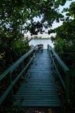 对小木船坞的路在湖,盖在植被 湖在背景中能被看见 Marapendi盐水湖,里约 免版税库存图片
