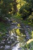 对小河的作用 库存照片