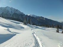 对山的冬天足迹 免版税库存图片
