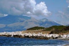 对山的看法在从科孚岛海岛的阿尔巴尼亚 免版税库存照片
