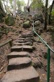对岩石的弯曲的陡峭的楼梯 库存照片