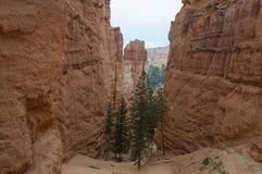 对峡谷的基地的供徒步旅行的小道 免版税库存照片