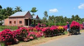 对市场在湄公河三角洲,越南的人运载的花 图库摄影