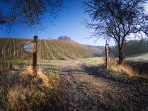 对德国葡萄园的意想不到的风景视图在巴伐利亚 免版税库存照片