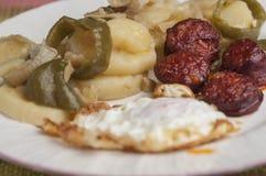 对恶劣的系列16的土豆 免版税库存图片