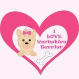 对您的宠物的爱消息 约克夏狗动画片例证 库存图片