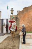对战士坐的马的一次老旅游妇女谈话 库存图片